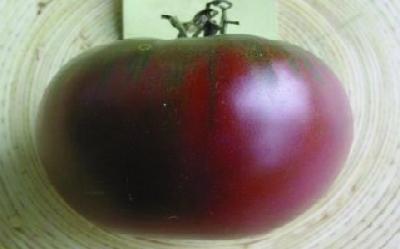 "Paradeis ""Cherokee lila Fleisch""/ Lycopersicon lycopersicum"